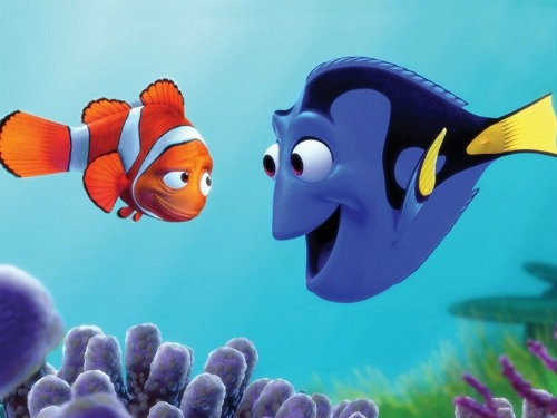 Marlin-and-Dory-finding-nemo-1003067_800_600